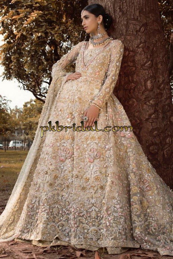 ayesha-ibrahim-beautiful-barat-dresses-collection-2019-11