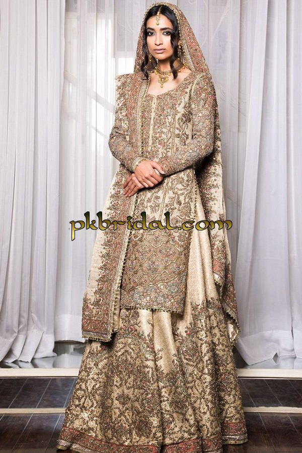 ayesha-ibrahim-beautiful-barat-dresses-collection-2019-6