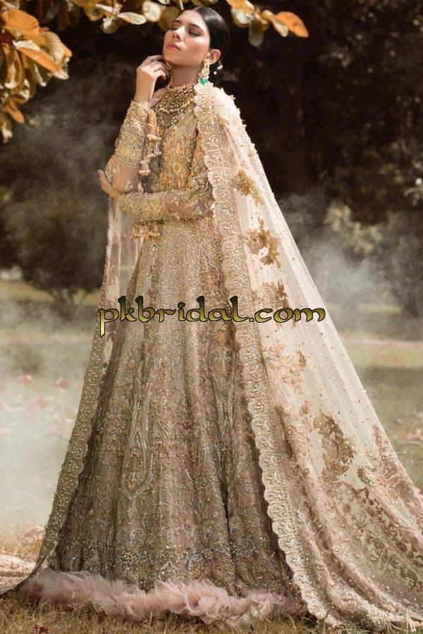 ayesha-ibrahim-beautiful-barat-dresses-collection-2019-17
