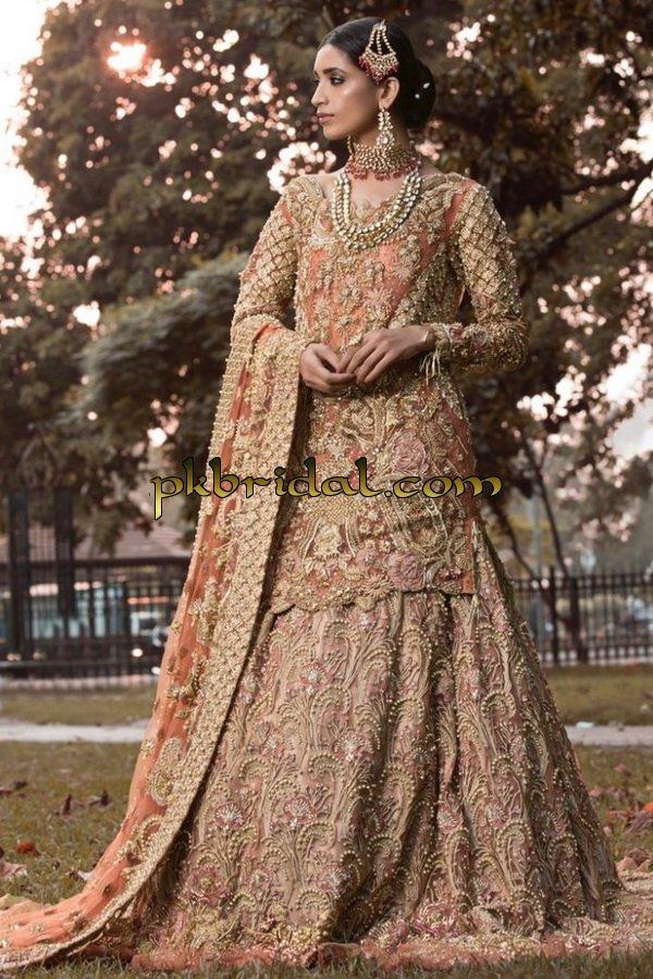 ayesha-ibrahim-beautiful-barat-dresses-collection-2019-21