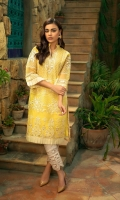 azure-embroidered-luxury-formal-kurti-2019-15