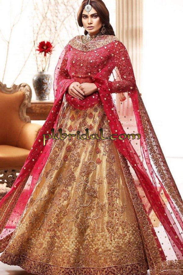 beautiful-pakistan-bridal-wear-collection-2018-30