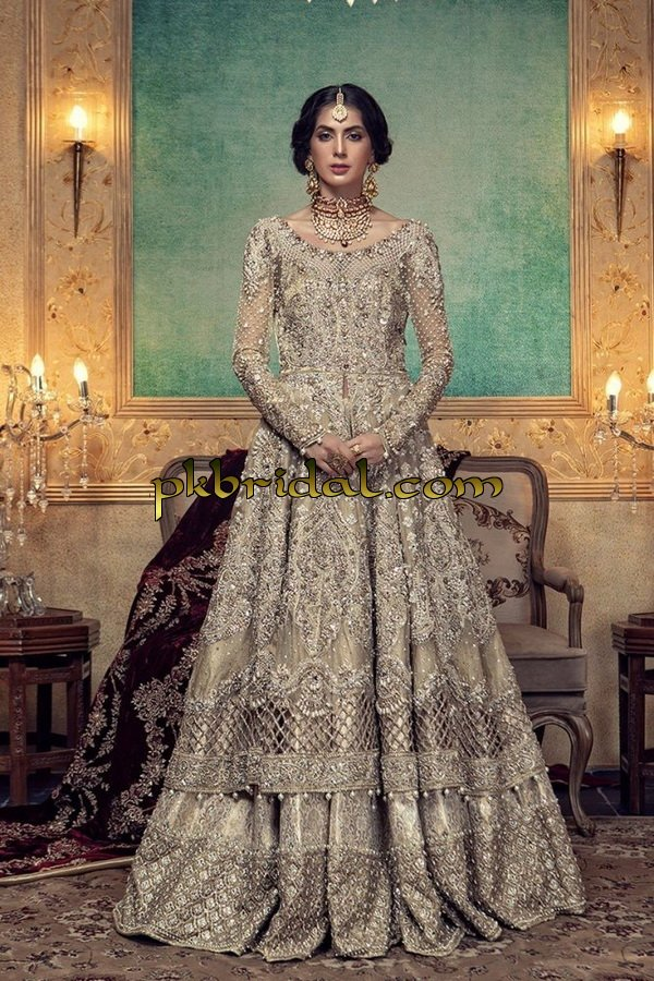 beautiful-pakistan-bridal-wear-collection-2018-44