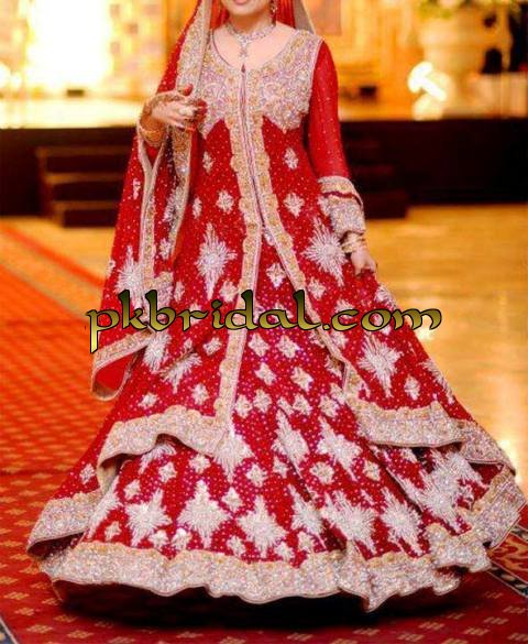 pakistani-wedding-dresses-2014-38