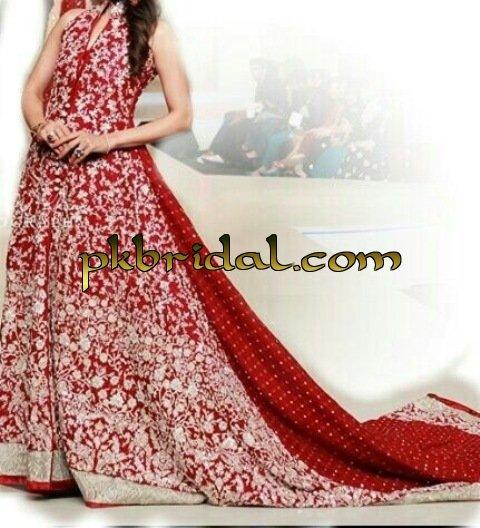 pakistani-wedding-dresses-2014-55