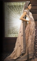 pakistani-bridal-dress-17