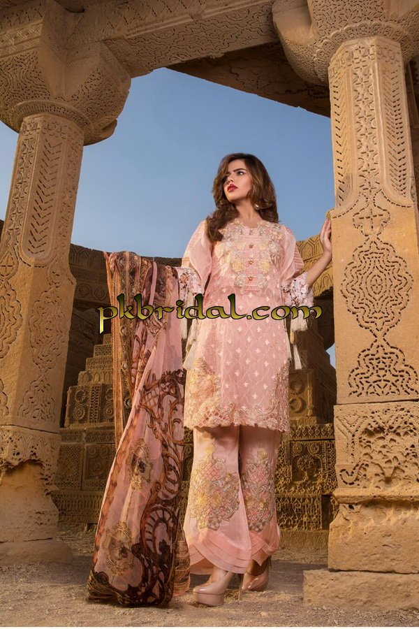 khas-nazakat-chiffon-collection-2019-20