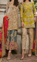pakistani-party-wear-dresses-colletion-2019-9