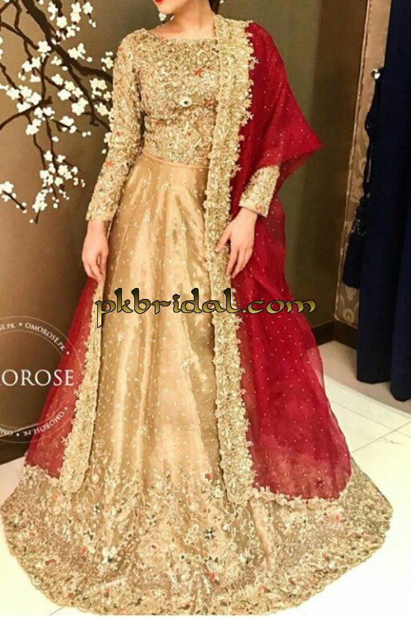 pakistani-stylish-party-wear-dresses-collection-2018-4