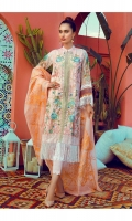 rajbari-luxury-lawn-spring-summer-2019-9
