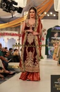 Heavy Bridal Sharara