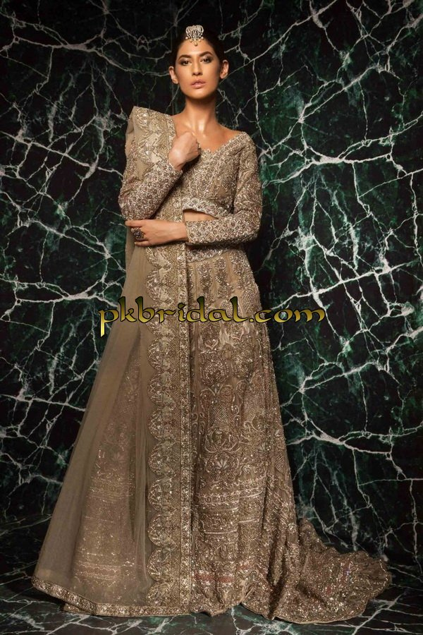 ayesha-ibrahim-beautiful-barat-dresses-collection-2019-25