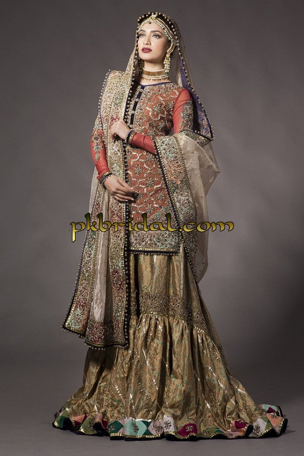 ayesha-ibrahim-beautiful-barat-dresses-collection-2019-2