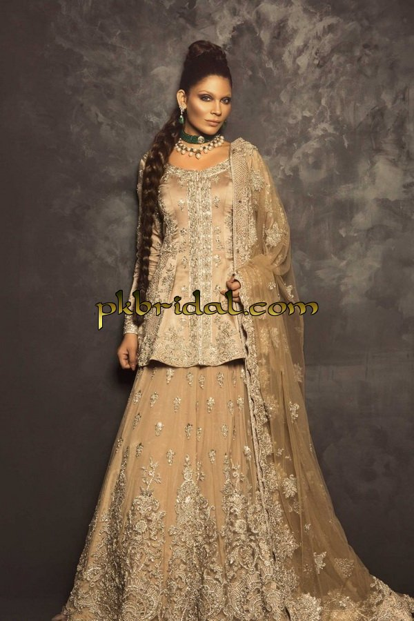 ayesha-ibrahim-beautiful-barat-dresses-collection-2019-16