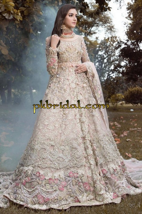 ayesha-ibrahim-beautiful-barat-dresses-collection-2019-12
