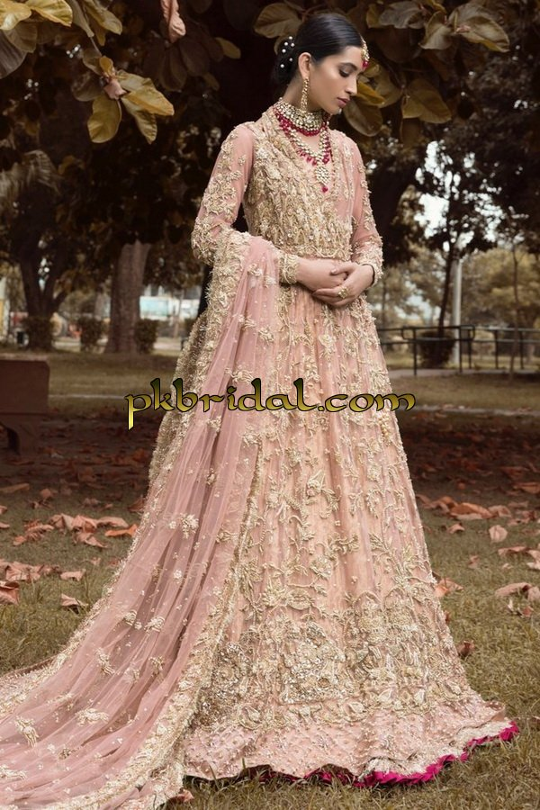 ayesha-ibrahim-beautiful-barat-dresses-collection-2019-19