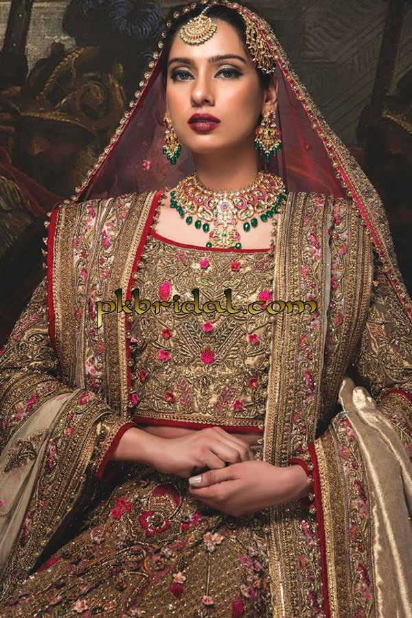beautiful-pakistan-bridal-wear-collection-2018-20