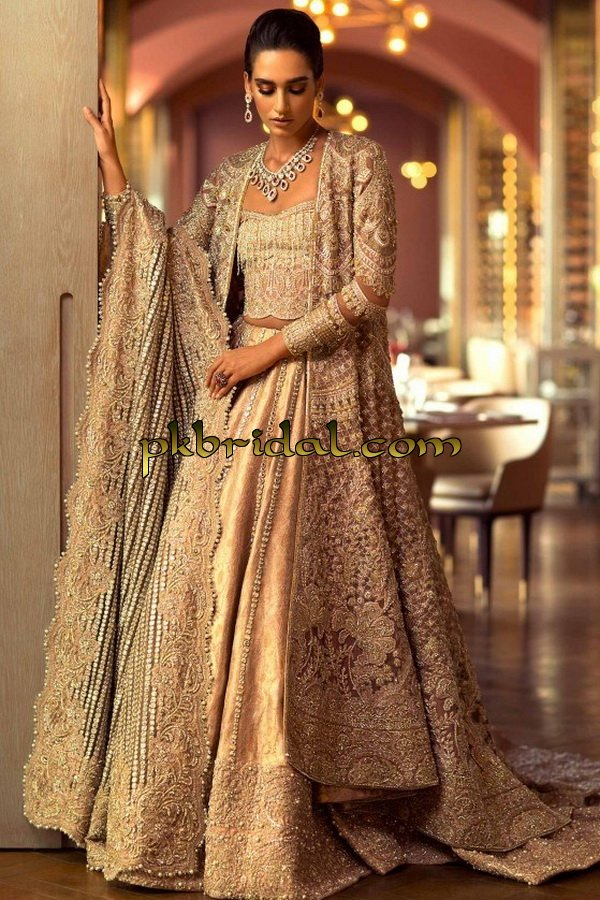 beautiful-pakistan-bridal-wear-collection-2018-26