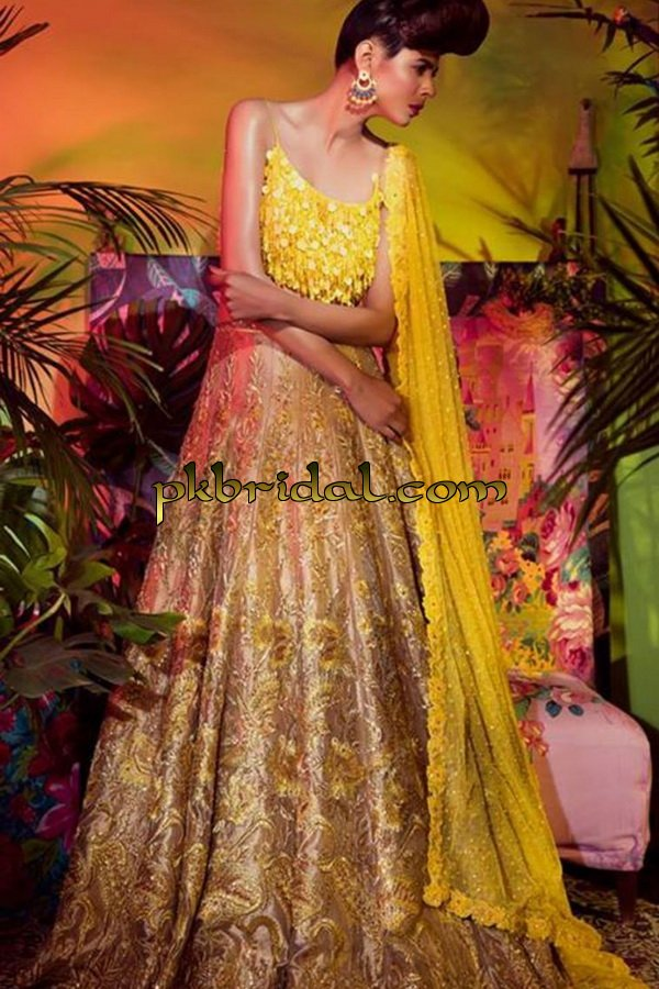 beautiful-pakistan-bridal-wear-collection-2018-35