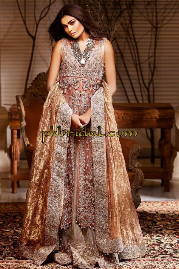 beautiful-pakistan-bridal-wear-collection-2018-6