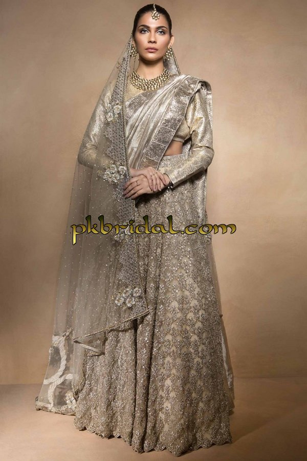 beautiful-pakistan-bridal-wear-collection-2018-11