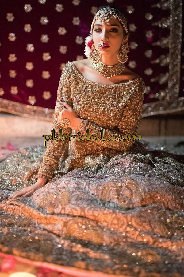 beautiful-pakistan-bridal-wear-collection-2018-12
