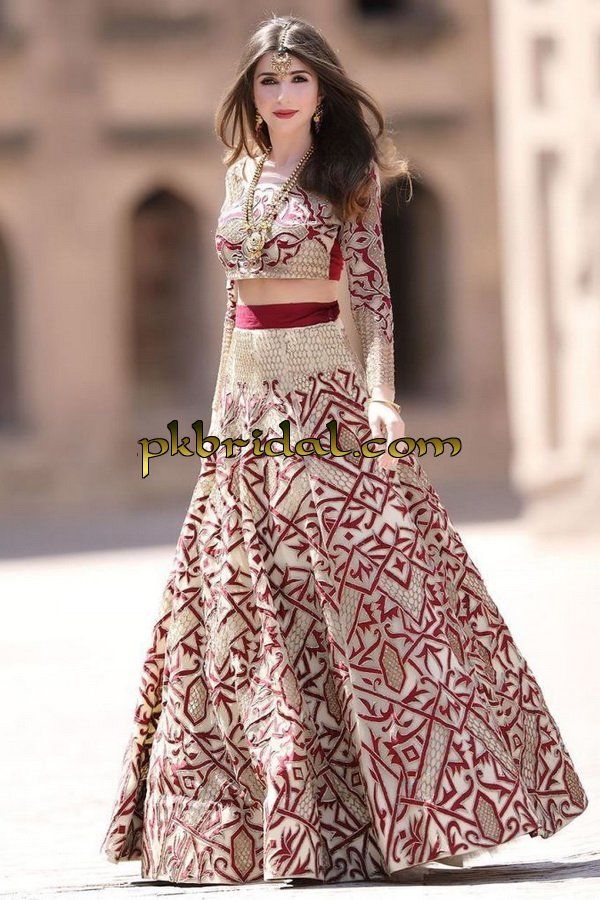beautiful-pakistan-bridal-wear-collection-2018-9