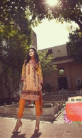 edenrobe-embroidered-winter-collection-2017-26