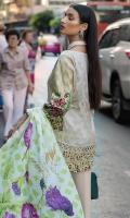 erum-khan-embroidered-chiffon-range-2019-3