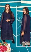 veena-durrani-embroidered-kurti-collection-2019-12