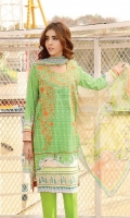 warda-single-embroidered-shirts-79