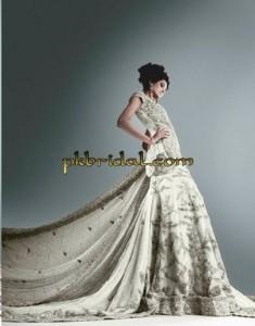 Pakistani Traditional Bridal Dress