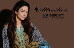 Attraction Lawn