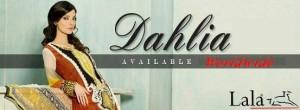 Dahlia Lawn